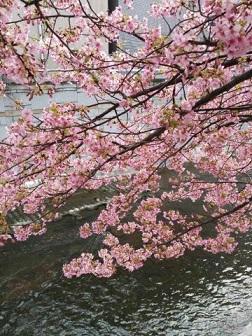 中野新橋にて 冷たい風が故人との別れを募らせる通夜・葬儀
