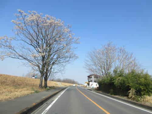 3月のお引っ越し、群馬東部、埼玉北部、粗大ごみ格安処分。