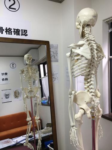 """ガイコツセラピーとコラボ""""!骨格矯正で若返り☆"""