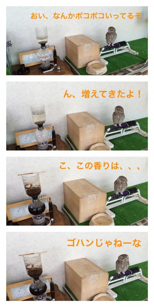 今日の徳光05+宣伝