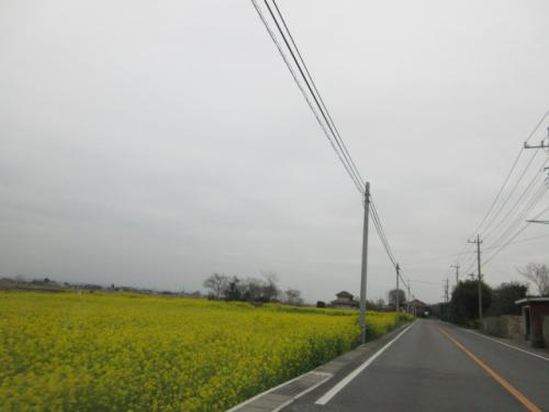 新生活、4月のお片付け、埼玉、群馬の格安便利屋。