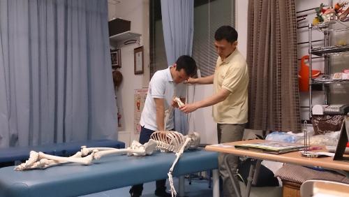 PNF整体 肩 神奈川県横浜 整体学校をお探しの方