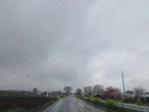 雨の一日、天気が悪くなりました。