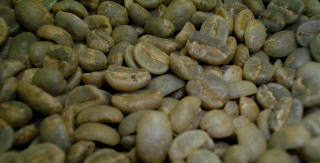 豆は鮮度が命