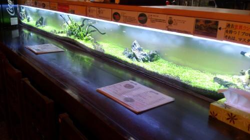 入場無料の水族館見たいな雰囲気のお店!デートにも使えるね!