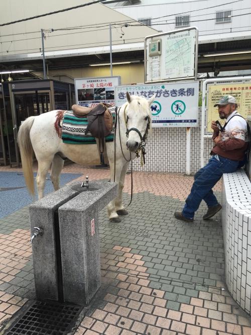 茅ヶ崎駅に馬が!