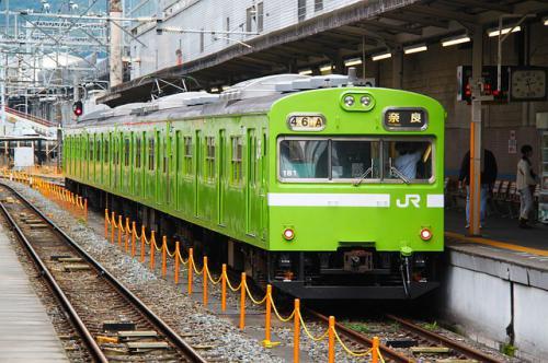 高齢動物と電車移動