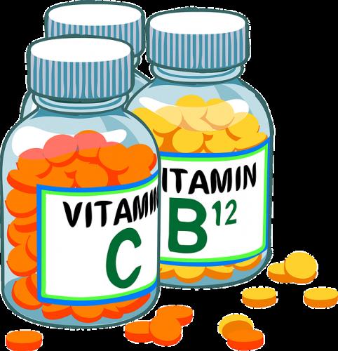 高齢動物とビタミン、ミネラル