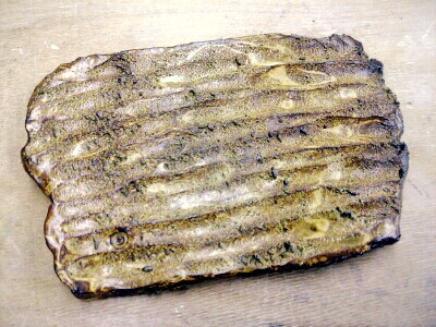 鮎の塩焼きが似合いそうな角皿。陶芸教室 国立けんぼう窯