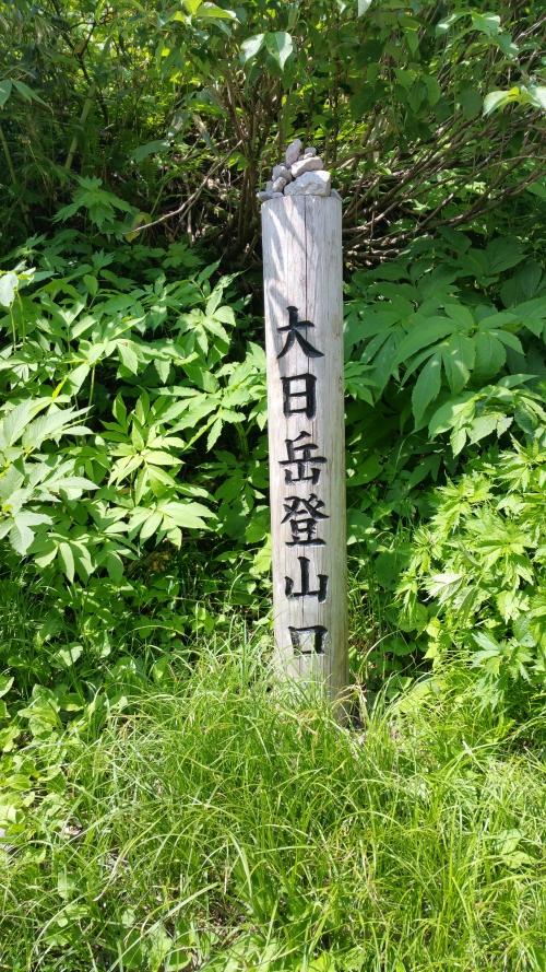 坂道((T_T))