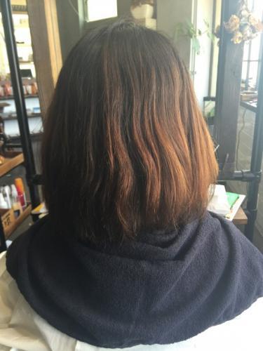 髪がまとまらないのはすべてダメージのせいではないんです!