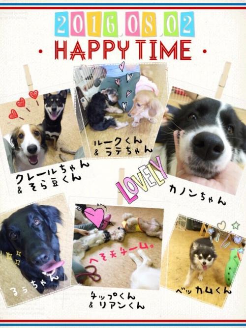 スウェーデンの犬事情から日本を見てみる