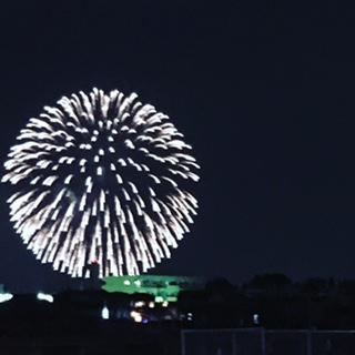 SOLFA 夏休みのお知らせ