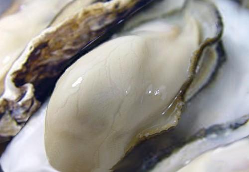 【牡蠣料理】栄養と健康効果