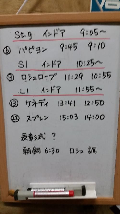 第10回SHIZUOKAスポーツホースショー