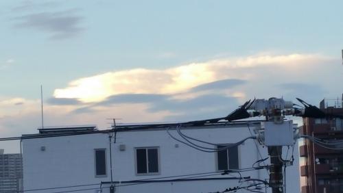 又、龍雲に会えました/(^-^)
