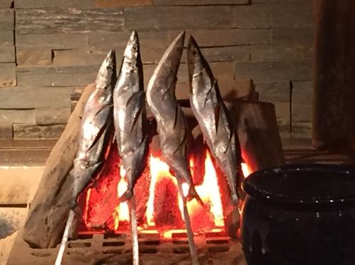 秋刀魚はじまりました〜