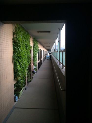 江戸川区にて引越しサポート2t、搬入搬出格安は便利屋