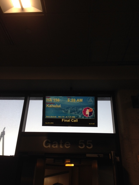 【白楽 カフェ】ハワイアンエアに乗って