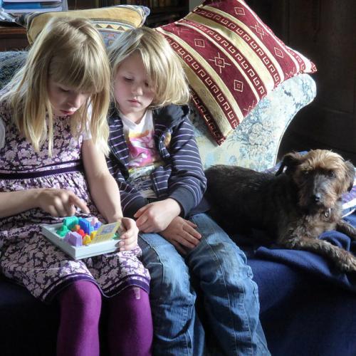 犬猫の恐怖症と分離不安症