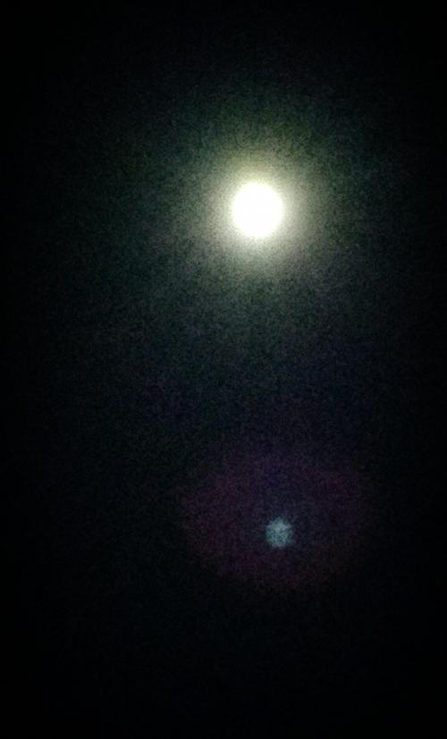 今夜も月に祈ります