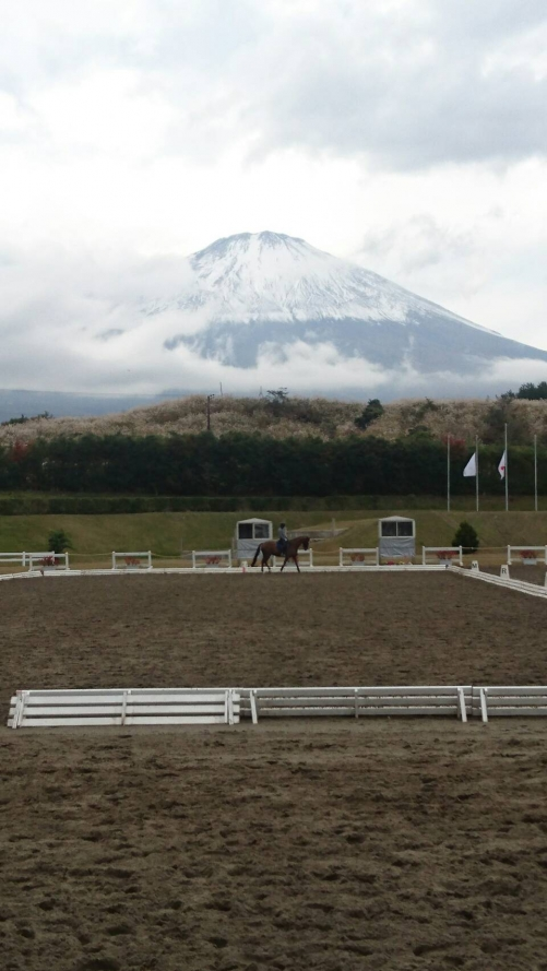 全日本馬場馬術大会part1