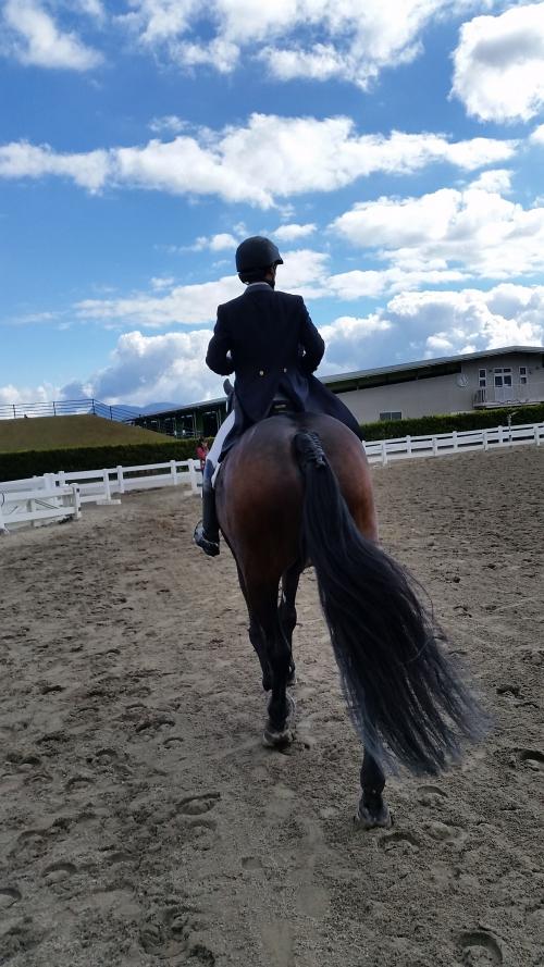 全日本馬場馬術大会2日目