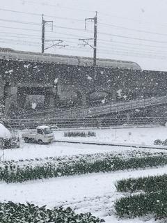 雪でも新幹線は走っています。