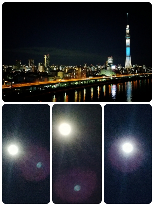 今夜の満月は綺麗ですね!