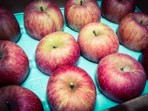 りんごが届きました〜(*>∀<*)