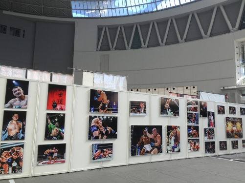 格闘技EXPO キッズレスリング教室 登戸整体