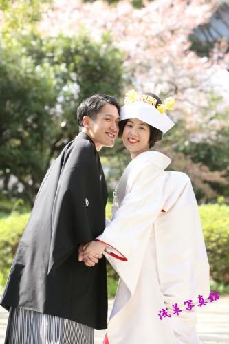 とても人気な桜プラン・予約受付中・急いで!