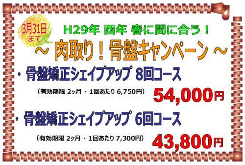 〜肉取り骨盤キャンペーン〜