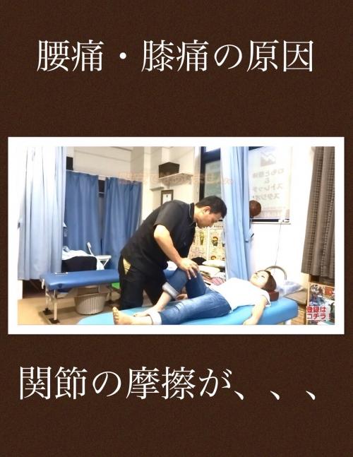 腰痛・膝痛 関節の調整を受けないと良くならない。