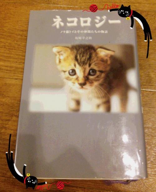 ネコロジーと地域猫活動