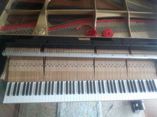 横浜市旭区M 様宅、ヤマハグランドピアノC7調律に、お伺いしました。
