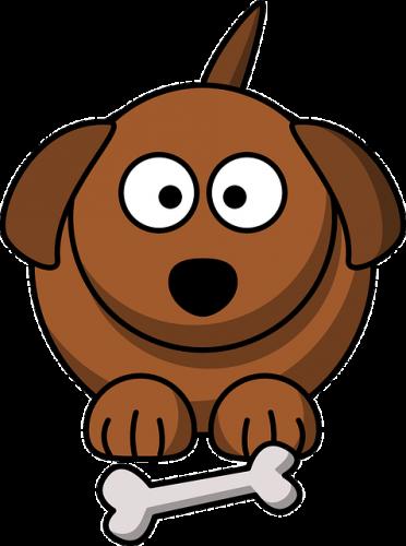 犬猫の食べ物の脂肪と栄養などは吸収経路が違う