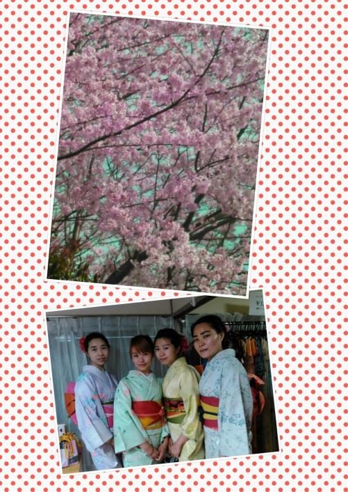 レンタル着物で女子会、中国からのお客様!
