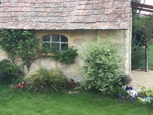 ガーデンスタジオ:現在のバラのようす