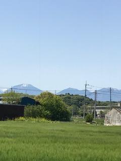 麦畑、新緑、春の日光連山