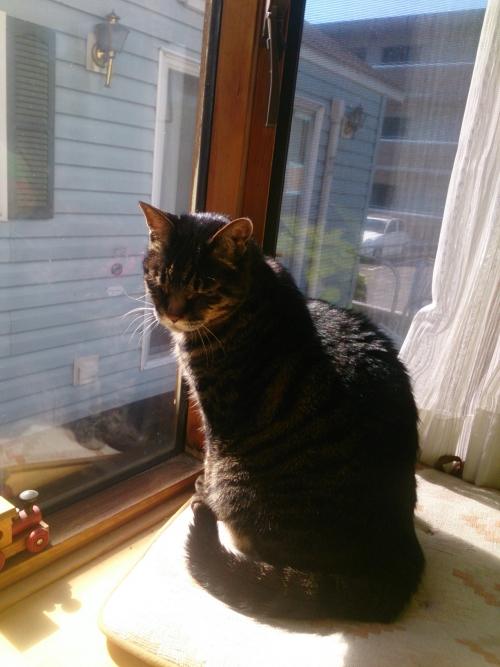 ジュニア19才、日射しが眩しそう♪