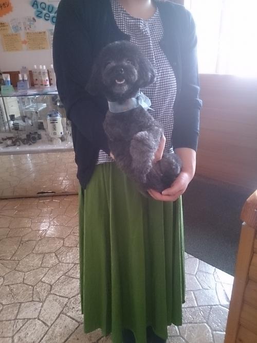 飼い主さんに抱っこされて大満足でした。お利口さんね♪