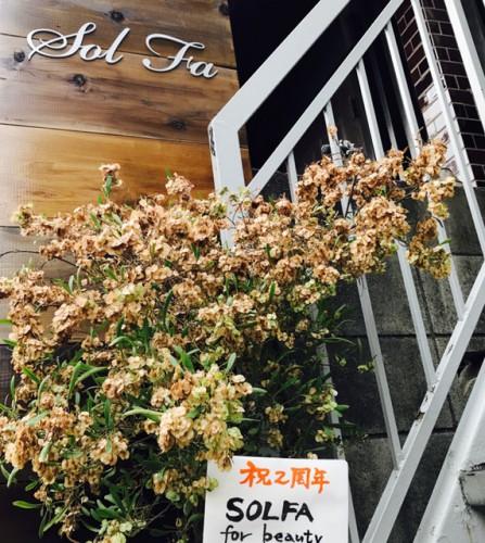 祝SOLFA for beauty 2周年