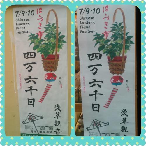 浅草ほおづき市を浴衣で楽しみましょう~ご予約の方¥2900