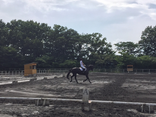 壬生ドレッサージュ 2日目 結果