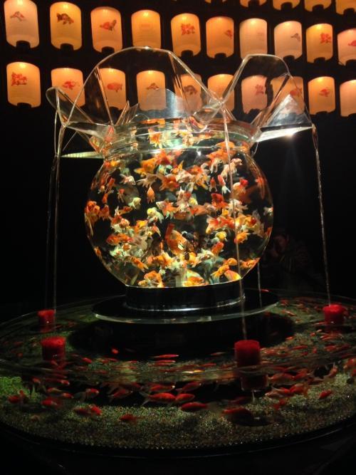 アートアクアリウム展~博多・金魚の祭~に行ってきました。