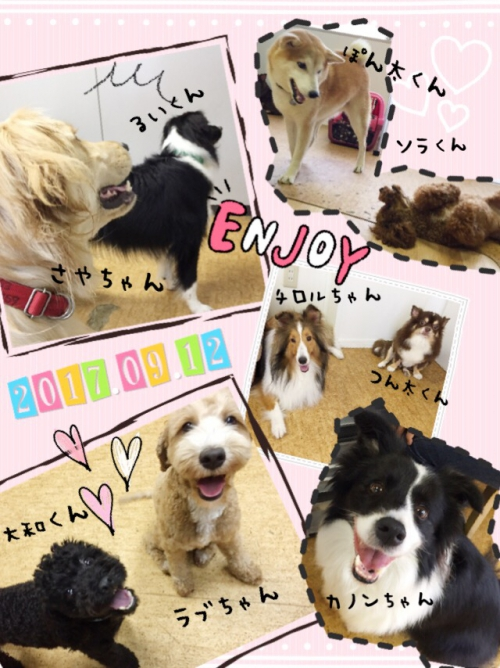愛犬と世界旅行