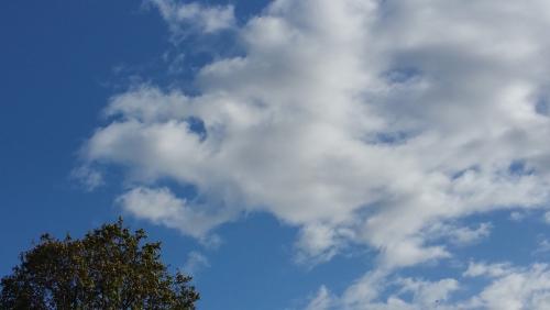 パリの空に白龍雲!