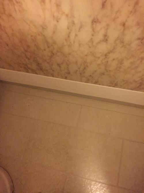 浴室壁補修