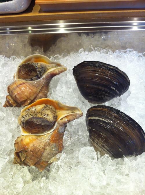 つぶ貝、北寄貝、牡蠣、はまぐり入荷しました。
